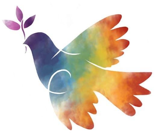 pace-foto commenti-casa editrice costruttori di pace-cecodipam-acodipa onlus