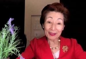 Fuji Declaration - belle notizie dal 2020-Martina Bonetti-casa editrice costruttori di pace-Maria Terranova (3)