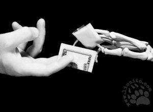 Il-moltiplicatore-di-ricchezza-delle-mafie-catena-cancilleri-casa-editrice-costruttori-di-pace-maria-terranova (3)